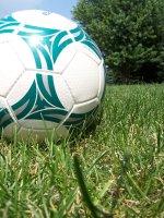 Zur Fussball-WM: Du bist Oranjes!