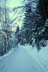 Promenade nach Saalbach